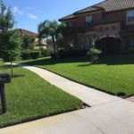 Spring lawn care tampa
