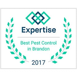 Expertise Best Pest Control in Brandon Award